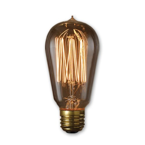 Bulbrite 136019 Pack of (2) 60 Watt Antique Clear Dimmable ST18 Shaped Medium (E, Antique -
