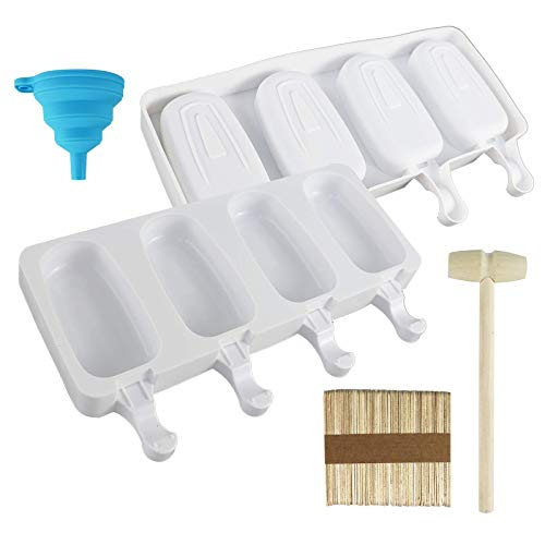 COMPLETE POPSICLE MAKING KIT