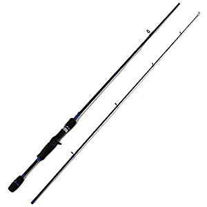 Entsport 2 piece casting rod graphite for Baitcaster fishing rod