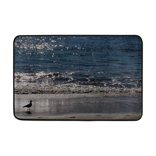 (RH Studio Carpet Gull Sea Sunset Bird Doormat Indoor Outdoor Entrance Floor Mat Bathroom 23.6 X 15.7 Inch)