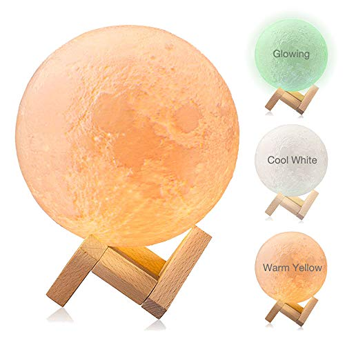 Moon Light, Dikale Warm Yellow/Cool White/Night Light LED 3D Print Moon Lamp Touch Control and USB Rechargeable, Moon Light Lamps Night Lights for Baby Kids Lover Birthday Party Gifts(Diameter 4 inch)