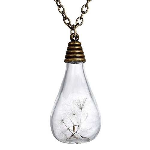 """FM FM42 Dried Dandelion Seed Glass Locket Pendant Necklace with 26"""" Rolo Chain FN2080"""