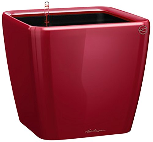 Lechuza Premium Quadro 21cm High Gloss Scarlet Red Self Watering Rounded Square Planter Pot