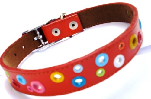Puppy Leather Loki (The Cool Puppy Leather Dog Collar - Loki Puppy RED Large (12-14 inches))