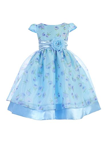 Ellie Kids Little Girls Light Blue Floral Cap Sleeve Flower Girl Dress 4