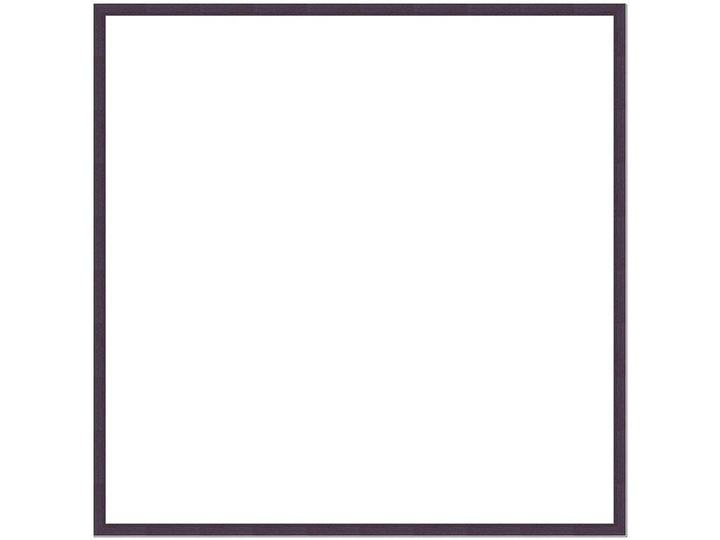 ラーソンジュールニッポン 額縁 D816 黒 50角 アクリル D816419 B003NX7WS4 50角|黒 黒 50角