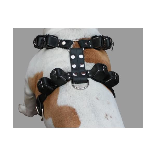 10 Lbs Black Genuine Leather Weighted Pulling Dog Harness for Exercise and Training. Fits 35″-44″ Chest Click on image for further info. 2