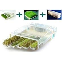 EasyGreen Micro Farm Sprouter Mist Generator & 96-activation timer