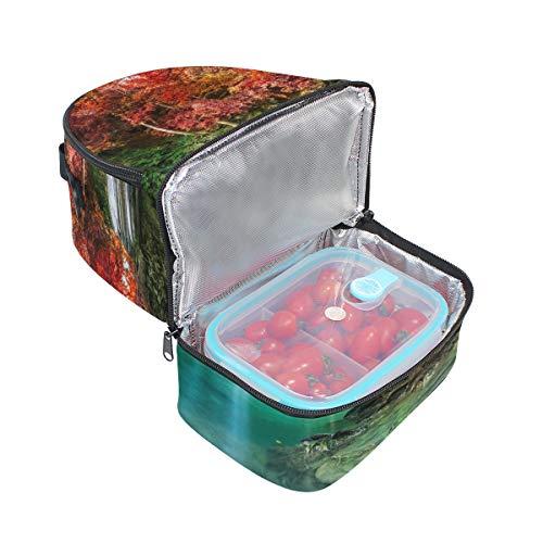 nique Parc Forêt déjeuner double pour épaule Sangle Sac Cooler de pique à national Cascade réglable qnR6nYBwg