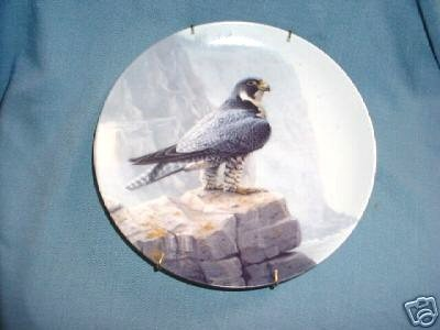 The Peregrine Falcon from Majestic Birds Series Collector Plate (Majestic Birds Plate)