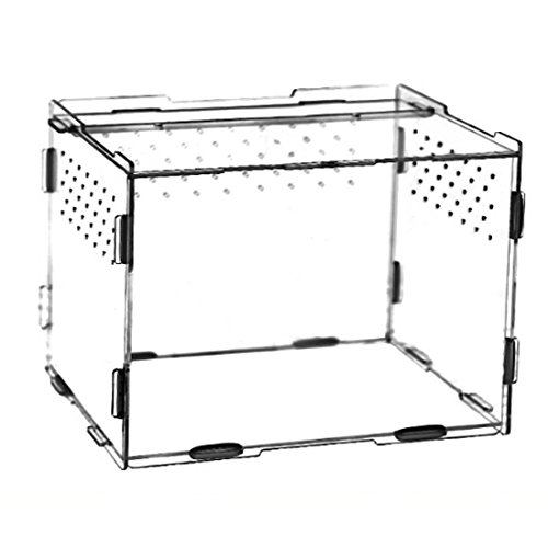 Petforu Aquarium Breeding Tank Reptile Feeding Container Acrylic by Petforu