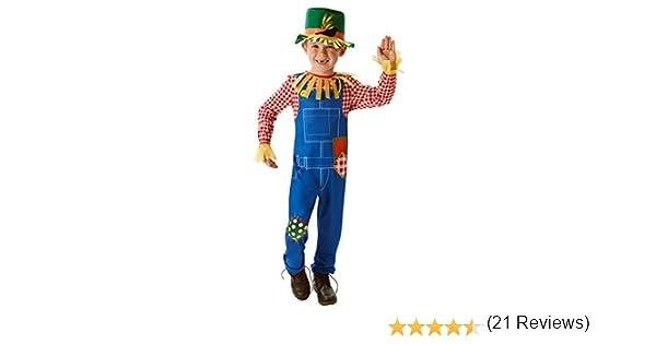 Rubies - Disfraz oficial del Sr. Scaregrow para niños: Amazon.es ...