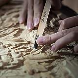 WAYCOM 24PCS Wood Knife Kit Set Wood Carving