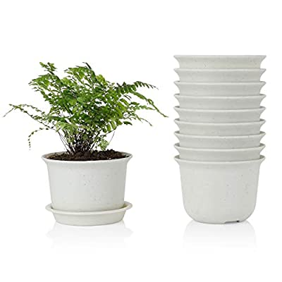 Greenaholics Plant Pots - 5.9 Inch Resin Nursery Pots with Saucers for Succulent&Little Plant, Seed Germination, Grey, Plastic Pots, Set of 10: Garden & Outdoor