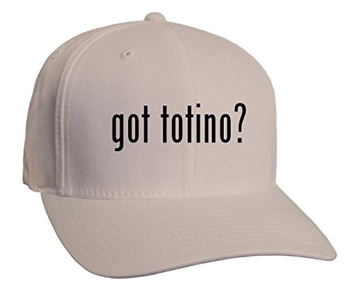 got-totino-adult-baseball-hat-silver-large-x-large