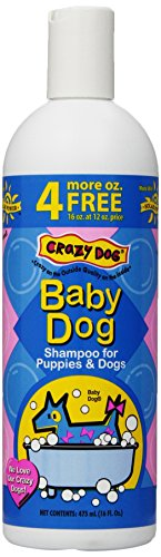 Crazy Dog Baby Powder Shampoo for Dogs, 16-Ounce