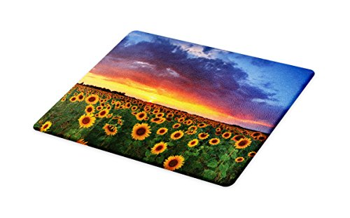 Lunarable Sunflower Cutting Board, Field of Sunflowers Sunset Dramatic Sky with Clouds Scenic Picture, Decorative Tempered Glass Cutting and Serving Board, Small Size, Sky Blue Fern Green Amber