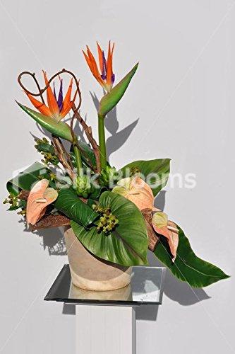 Stunning Tropical Birds of Paradise Floral Vase Arrangement with Peach Anthurium