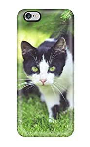 Series Skin Case Cover For Iphone 6 Plus(cat In The Grass)