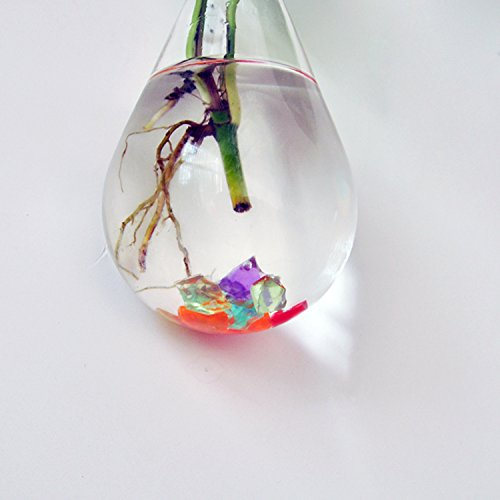 Amazon.com: Blesiya Waterdrop Glass Flower Vase Hanging Hydroponic Container Terrarium Decor DIY: Home & Kitchen