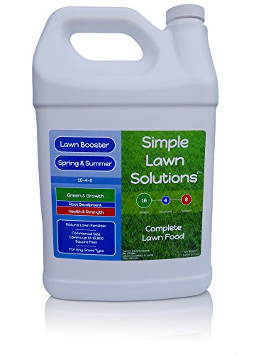 Advanced 16-4-8 Balanced NPK- Lawn Food Natural Liquid Fertilizer- Spring & Summer Concentrated Spray - Any Grass Type- Simple Lawn Solutions (1 Gallon)