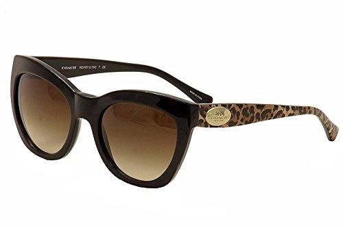 Coach Womens Sunglasses HC8151 Acetate