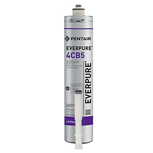 Pentair Everpure Kleensteam CT Filter Replacement Kit by Fresh Water Systems