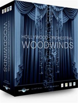 East West Hollywood Orchestral Woodwinds Diamond - Windows from East West