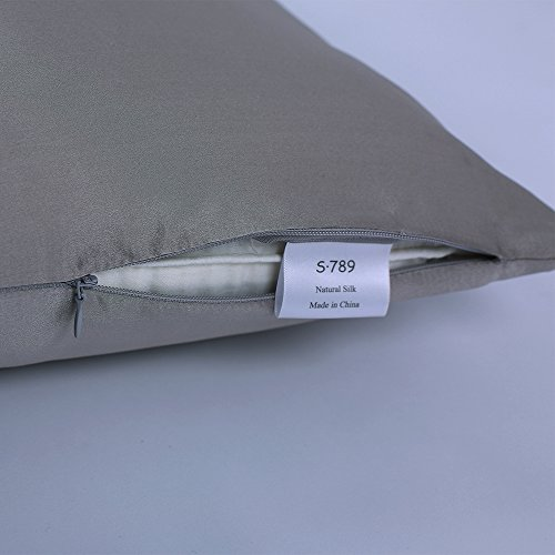 S·789 Chameuse Silk Pillowcase with Hidden Zipper Window,Luxury Satin Silk Pillow Sham,Both Sides 19 Momme Silk,20x36 Inches,Silver Grey Color Oganic Pillowcase with Gift Package by S·789 (Image #1)