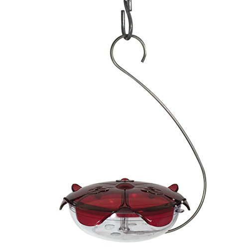 Droll Yankees Hummingbird Feeder with Hanger, Ruby Slipper Red Feeder, 5 Ounce Nectar ()