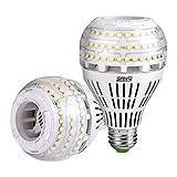 27W (250 Watt Equivalent) A21 Dimmable LED Light Bulbs, 4000 Lumens, 5000K Daylight, 270° Omni-Directional, E26 Medium Screw Base LED Floodlight Bulb, 5-Year Warranty, SANSI (2 Pack)