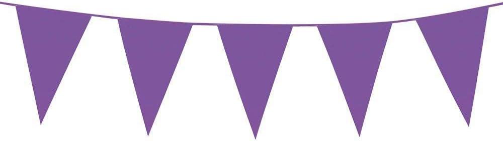 Boland – Guirnalda con banderines 45x30 (XL) violeta: Amazon.es: Juguetes y juegos