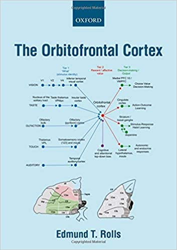 The Orbitofrontal Cortex - Original PDF