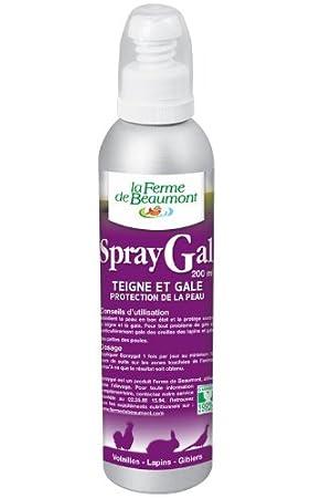 La ferme de beaumont spraygal jardin - Ferme de beaumont poule ...