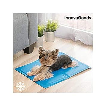 InnovaGoods IG811426 Esterilla Refrigerante para Mascotas, 40 x 50 cm: Amazon.es: Productos para mascotas