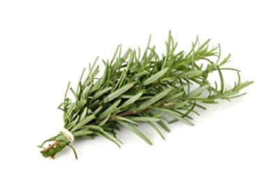 112mg Certified Organic Rosemary Seeds ~80 Count Perennial Garden Savory Herb