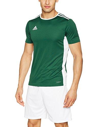 shirt 18 Entrada T Verde Green collegiate Adidas white Uomo tqPzxPv
