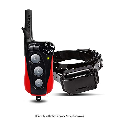 Dogtra iQ Plus Remote Trainer (Best Small Dog Remote Trainer)