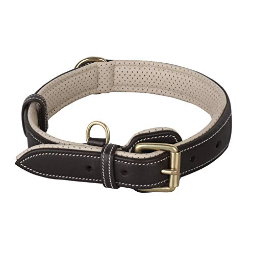 PawFurEver Leather Dog Collar Soft & Breathable Padded | Elegant Design | Heavy Duty | Keeps Your Dog Comfortable…