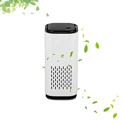 NASKY Air Purifier for Home/car Quiet Odor Eliminators Negative Ion Air HEPA Filter Cleaner (White)