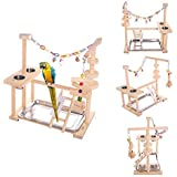 """(S(16""""L10""""W15""""W)) - QBLEEV Parrot Playstand Bird Playground Wood Perch Gym Playpen Ladder with Toys Exercise Play (Include a Tray)"""
