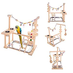 """QBLEEV Parrot Playstand Bird Play Stand Cockatiel Playground Wood Perch Gym Playpen Ladder with Feeder Cups Toys Exercise Play (Include a Tray) (16"""" L10 W15 H) 29"""