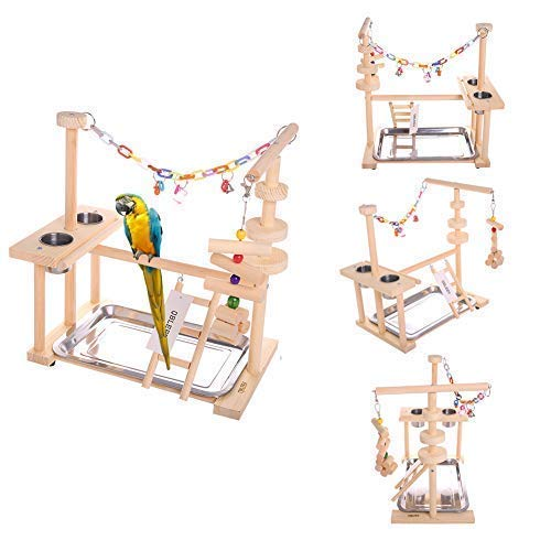 Best bird play stand list