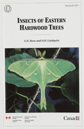 Insects of Eastern Hardwood Trees (Forestry Technical Report)