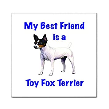 Amazon.com: My Best Friend is Toy Fox Terrier Tile Trivet ...