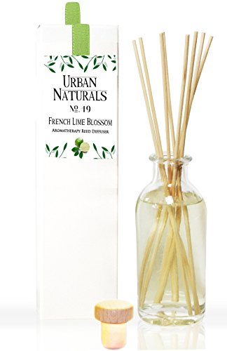 Urban Natural - French Lime Blossom Citrus Reed Diffuser Oil Set by Urban Naturals | Smells like Fresh Lime Trees! Perfect Kitchen or Bathroom Scent | Long Lasting Fragrance | Made in the USA