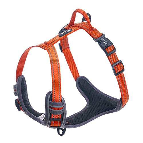 - Pettom Reflective No Pull Dog Harness Adjustable Pet Nylon Vest Comfort Harness for Dogs Outdoor Walking (S(Chest Size: 18''-22''), Orange)