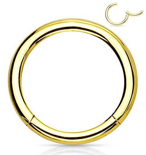 Forbidden Body Jewelry 16G 12mm Surgical Steel Hinged Easy Use Seamless Hoop Body Piercing Ring, Gold Tone (Best Way To Store Gold Jewelry)