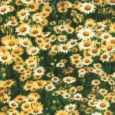 Wildflowers VI - Yellow - Moda - Sentimental Studios - 752106073234 ()