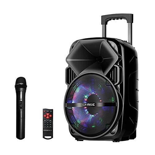 EARISE Bluetooth PA Speaker